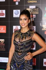 Pallavi Sharda at Red Carpet Of Zee Cine Awards 2017 on 12th March 2017 (47)_58c68c7cedd64.JPG