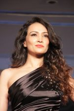 Dipannita Sharma at Designer Nidhi Munim Summer Collection Fashion Week on 18th March 2017 (34)_58ce7a35eeff0.JPG