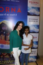 Elli Avram at The Red Carpet Of The Special Screening Of Poorna on 27th March 2017 (40)_58da18f61be8a.JPG