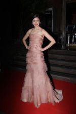 Anushka Sharma On Red Carpet Of Hello Hall Of Fame Awards on 29th March 2017 (9)_58dccebfa6ec1.jpg