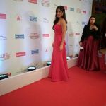 Katrina Kaif On Red Carpet Of Hello Hall Of Fame Awards on 29th March 2017 (9)_58dccf0a9d081.jpg