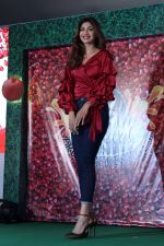 Shilpa Shetty at Launch Of B Natural Fruits Beverages on 12th April 2017