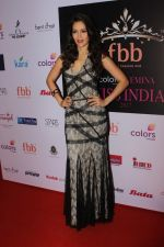 Waluscha de Sousa at Red Carpet To Celebrate Evening Of Tamasha on 1st June 2017 (23)_5931736be167b.JPG