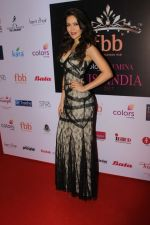 Waluscha de Sousa at Red Carpet To Celebrate Evening Of Tamasha on 1st June 2017 (25)_5931736f7d52a.JPG