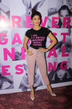 Jacqueline Fernandez at support for Iam forever against animal testing event on 9th June 2017 (76)_593bbb1b4a005.JPG