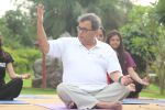 Subhash Ghai doing yoga practice along with his daughter and grandchildren at Whistling Woods International on 15th June 2017 (8)_5942a11f77488.JPG