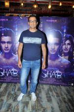 Interview With Producer Sanjay Suri For Film Shab (9)_594bd22c8bb48.JPG
