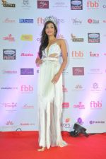 during Miss India Grand Finale Red Carpet on 24th June 2017 (163)_59507d7bd1525.JPG