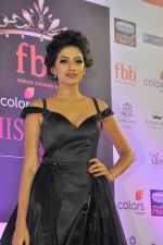 during Miss India Grand Finale Red Carpet on 24th June 2017 (164)_59507d7cb866f.JPG
