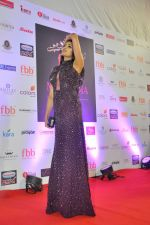 during Miss India Grand Finale Red Carpet on 24th June 2017 (166)_59507d7edc440.JPG