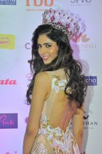 during Miss India Grand Finale Red Carpet on 24th June 2017 (179)_59507d8c6d529.JPG