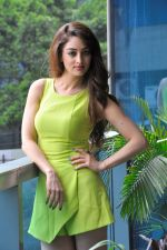 Sandeepa Dhar at the interview for Movie Baarat Company on 30th June 2017 (35)_595658e230d17.JPG