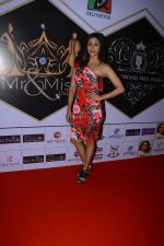 Kishwer Merchant at the Grand Finale of Dellywood 2017 on 30th June 2017