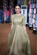 Sanjeeda Sheikh at 10th Gold Awards 2017 on 5th July 2017 (28)_595cf7931ca09.jpg