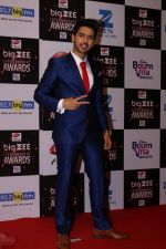 Armaan Malik At Red Carpet Of Big Zee Entertainment Awards 2017 on 29th July 2017 (79)_597d901b5c682.JPG