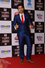 Armaan Malik At Red Carpet Of Big Zee Entertainment Awards 2017 on 29th July 2017 (81)_597d901d14abd.JPG