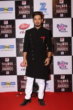 At Red Carpet Of Big Zee Entertainment Awards 2017 on 29th July 2017 (14)_597d9071131df.JPG