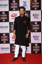 At Red Carpet Of Big Zee Entertainment Awards 2017 on 29th July 2017 (15)_597d9071d8977.JPG