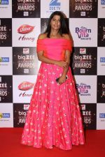 At Red Carpet Of Big Zee Entertainment Awards 2017 on 29th July 2017 (26)_597d907646a88.JPG