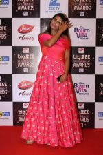At Red Carpet Of Big Zee Entertainment Awards 2017 on 29th July 2017 (27)_597d90772fd17.JPG