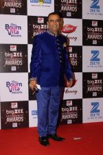 At Red Carpet Of Big Zee Entertainment Awards 2017 on 29th July 2017 (32)_597d9079bddef.JPG