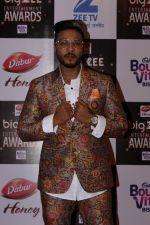 At Red Carpet Of Big Zee Entertainment Awards 2017 on 29th July 2017 (96)_597d9081a880f.JPG