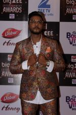 At Red Carpet Of Big Zee Entertainment Awards 2017 on 29th July 2017 (97)_597d90829f9b8.JPG