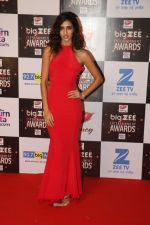 Disha Patani At Red Carpet Of Big Zee Entertainment Awards 2017 on 29th July 2017