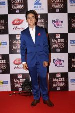 Faisal Khan At Red Carpet Of Big Zee Entertainment Awards 2017 on 29th July 2017