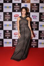 Lauren Gottlieb At Red Carpet Of Big Zee Entertainment Awards 2017 on 29th July 2017