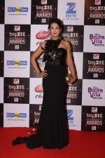 Preeti Jhangiani At Red Carpet Of Big Zee Entertainment Awards 2017 on 29th July 2017 (21)_597d91f714003.JPG