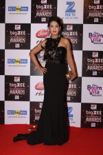 Preeti Jhangiani At Red Carpet Of Big Zee Entertainment Awards 2017 on 29th July 2017 (23)_597d920680506.JPG
