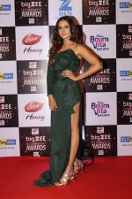 Sargun Mehta At Red Carpet Of Big Zee Entertainment Awards 2017 on 29th July 2017 (70)_597d926ace5c5.JPG