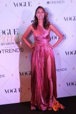at The Red Carpet Of Vogue Beauty Awards 2017 on 2nd Aug 2017 (12)_5982a5ee1e3a8.JPG