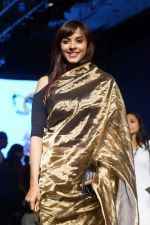 Manasi Scott At Lakme Fashion Week 2017 on 17th Aug 2017 (5)_5996c0a1c3c24.JPG