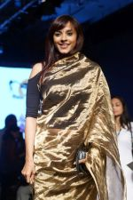 Manasi Scott At Lakme Fashion Week 2017 on 17th Aug 2017 (6)_5996c0a26275d.JPG