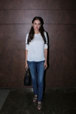 Evelyn Sharma at the Special Screening Of Film Shubh Mangal Savdhan on 31st Aug 2017