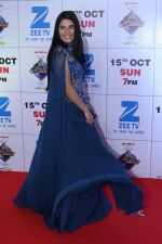 at the Red Carpet Of The Grand Celebration Of Zee Rishtey Awards 2017 on 10th Sept 2017 (118)_59b63055079a2.JPG