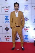 at the Red Carpet Of The Grand Celebration Of Zee Rishtey Awards 2017 on 10th Sept 2017 (122)_59b630579e4fe.JPG