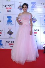 at the Red Carpet Of The Grand Celebration Of Zee Rishtey Awards 2017 on 10th Sept 2017 (171)_59b6306b0d23a.JPG