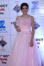 at the Red Carpet Of The Grand Celebration Of Zee Rishtey Awards 2017 on 10th Sept 2017 (172)_59b6306b96971.JPG