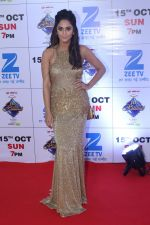 at the Red Carpet Of The Grand Celebration Of Zee Rishtey Awards 2017 on 10th Sept 2017 (200)_59b63072c086a.JPG