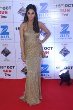at the Red Carpet Of The Grand Celebration Of Zee Rishtey Awards 2017 on 10th Sept 2017 (201)_59b630735e967.JPG