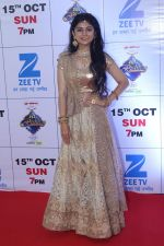 at the Red Carpet Of The Grand Celebration Of Zee Rishtey Awards 2017 on 10th Sept 2017 (242)_59b630848a775.JPG