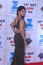at the Red Carpet Of The Grand Celebration Of Zee Rishtey Awards 2017 on 10th Sept 2017 (266)_59b630932b55c.JPG