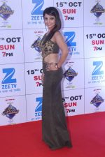 at the Red Carpet Of The Grand Celebration Of Zee Rishtey Awards 2017 on 10th Sept 2017 (268)_59b63094f2166.JPG