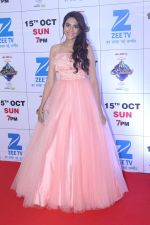 at the Red Carpet Of The Grand Celebration Of Zee Rishtey Awards 2017 on 10th Sept 2017 (282)_59b63096656d1.JPG