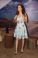 Evelyn Sharma at the interview For Stupid Man Smart Phone on 13th Sept 2017 (29)_59ba2019ef306.JPG