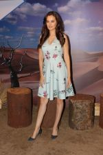 Evelyn Sharma at the interview For Stupid Man Smart Phone on 13th Sept 2017 (36)_59ba201dba5d5.JPG