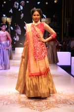 Candice Pinto Walk For The India International Jewellery Week 2017 on 24th Sept 2017 (22)_59c8ac98068a0.JPG